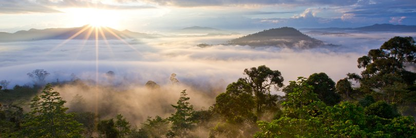 Dawn over the jungles of Borneo